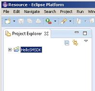 Project Explorer